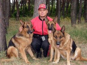 Дресирування собак в Полтаві