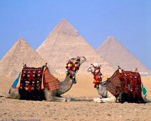 Тури до Єгипту, ОАЕ