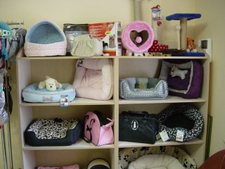 Будиночки,лежанки,сумки-переноски,когтеточки.
