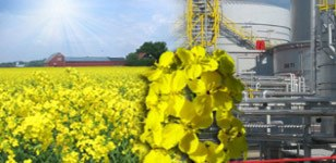 Біодизель заводи